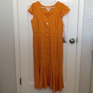 Rachel Parcell orange and white polka dot dress.